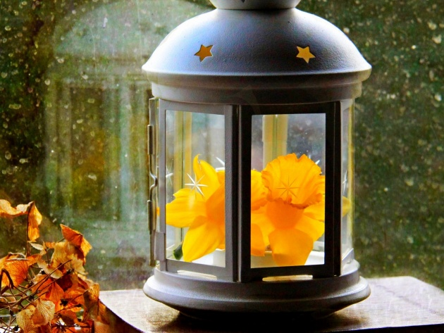 Wallpaper Lantern with a flower on the windowsill
