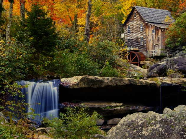 Wallpaper House in the autumn forest