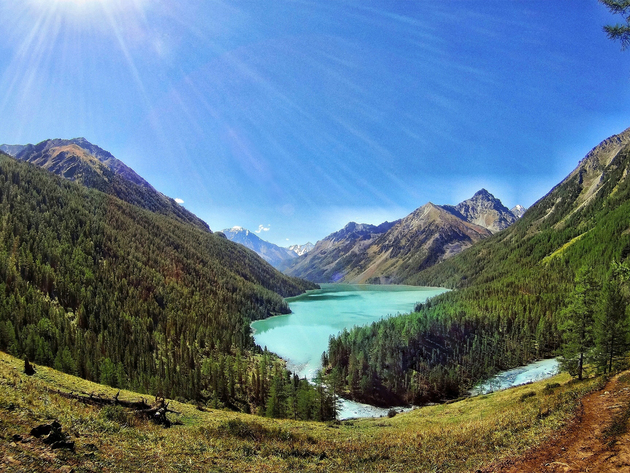 Wallpaper forest, lake, mountains, russia, altay
