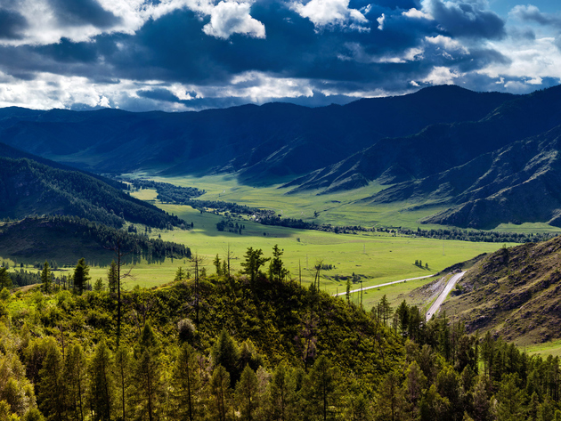 Wallpaper forest, grass, mountains, clouds, russia, altay, lawn