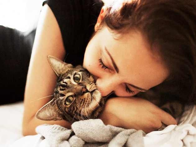 Wallpaper brunette, cat, face, girl, closed eyes, hugs