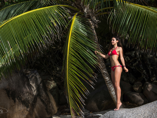 Wallpaper brunette, palms, swimsuit, girl, legs, bikini, seychelles, tan, boulder