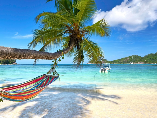 Wallpaper beach, sea, tropics, ocean, boat, palms, hammock