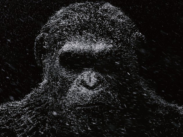 Wallpaper snow, monkey, war for the planet of the apes, caesar