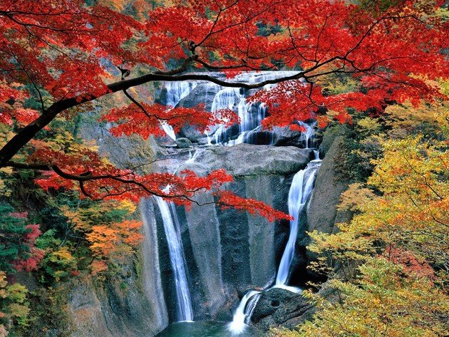 Wallpaper waterfall, autumn, foliage, rock, nature, japan, leaves, of fukuroda falls, daigo