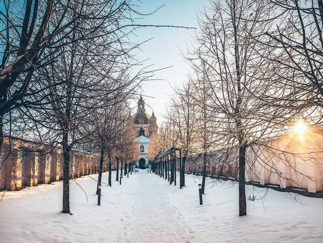 Wallpaper tree, snow, winter, lithuania, kaunas