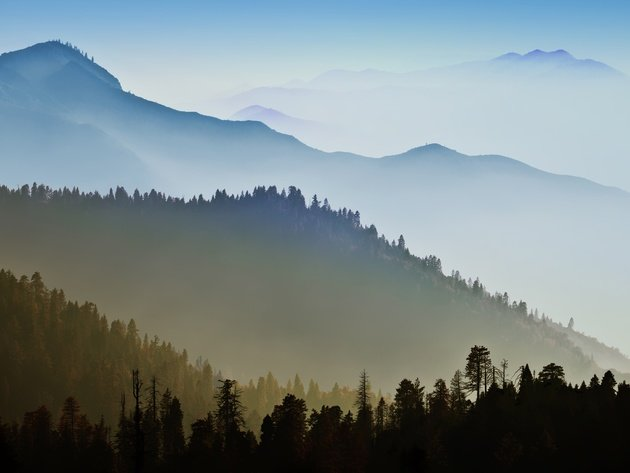 Wallpaper forest, mountains, fog, clouds