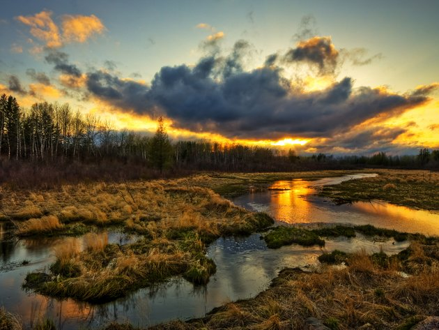 Wallpaper sunset, forest, clouds, field, water, stream, swamp