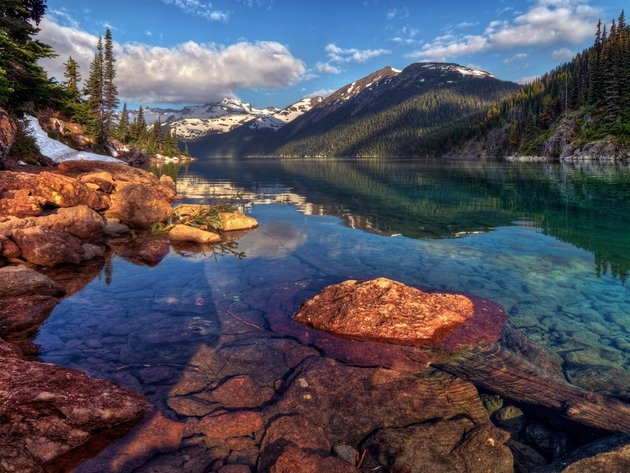 Wallpaper forest, lake, mountains, nature, clear water