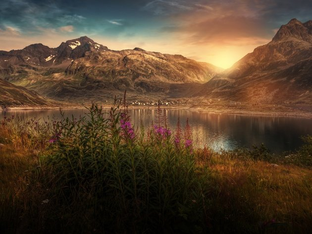 Wallpaper flowers, lake, sun, grass, mountains, sky, landscape