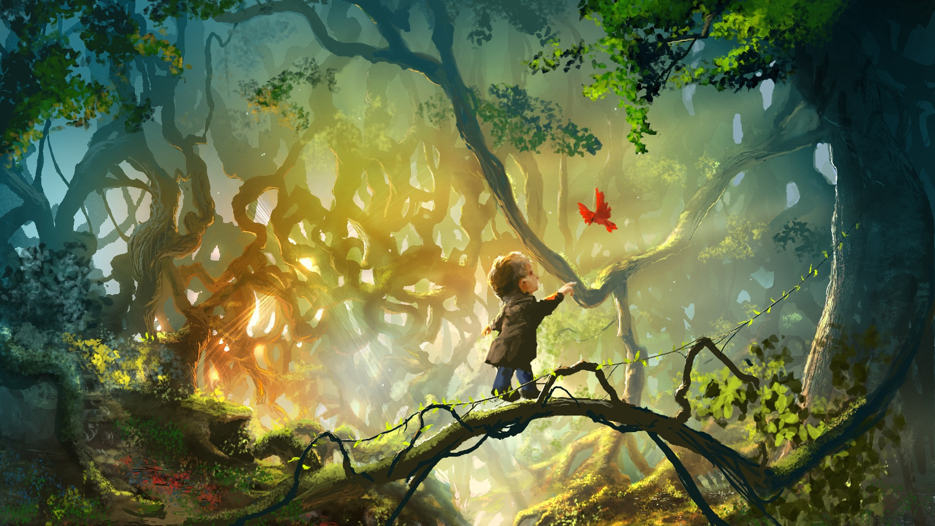 Download Wallpaper Forest Tree Light 1920x1080 Fairy Forest